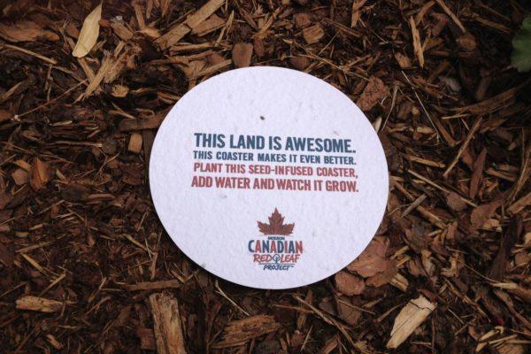 molson-canadian-seed-coaster